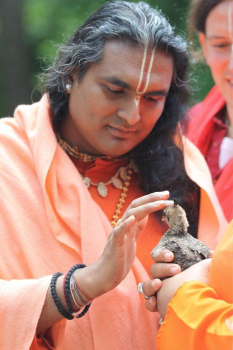 Guruji with baby peacock