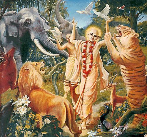 Tiere zu lieben ist göttlich